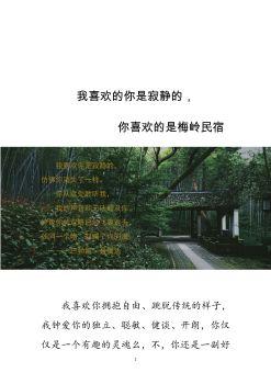 我喜欢的你是寂静的,你喜欢的是梅岭民宿-致丁哥书宣传画册