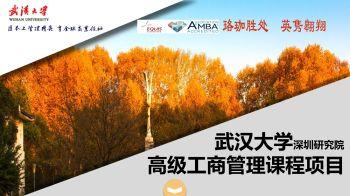 武汉大学EMBA精品课程班电子书
