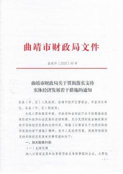 曲靖市财政局关于贯彻落实支持实体经济发展若干措施的通知电子宣传册