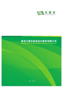 黑龙江惠农信息技术服务有限公司电子画册