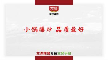 龙泽辣酱分销业务手册