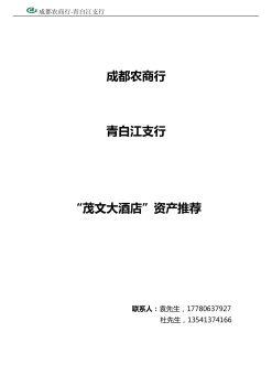 #优质资产特推#茂文大酒店电子杂志