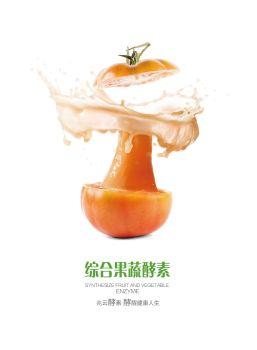 综合果蔬酵素画册,电子期刊,电子书阅读发布