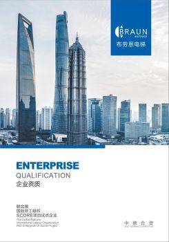 布劳恩电梯公司企业资质 电子书制作软件