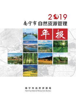 2019年南宁市自然资源管理年报