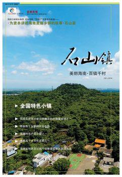 美丽海南·百镇千村——石山镇电子杂志
