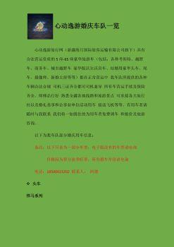 心动逸游婚庆车队一览_电子画册