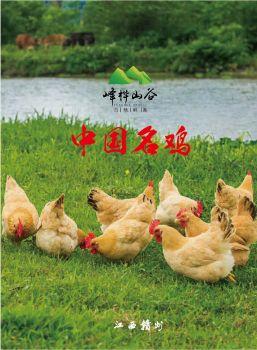 峰桦山谷画册 电子书制作软件