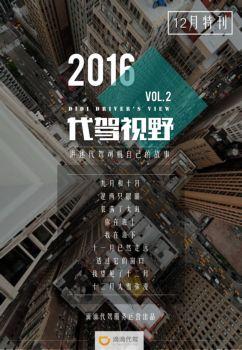 代驾视野 Vol.2,互动期刊,在线画册阅读发布