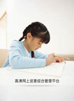 高清网上巡查综合管理平台电子书