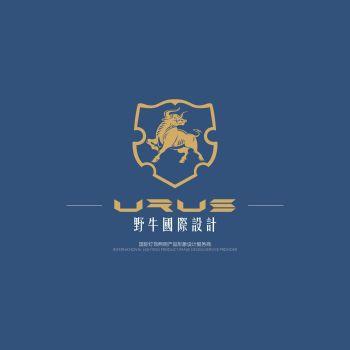野牛国际设计宣传册