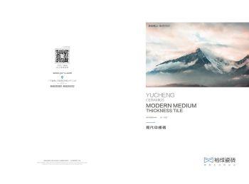 Y-400X800现代中板砖图册