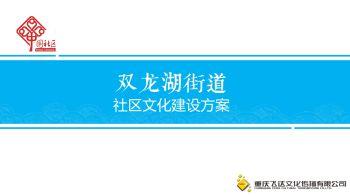 双龙湖街道社区文化建设12.1电子宣传册