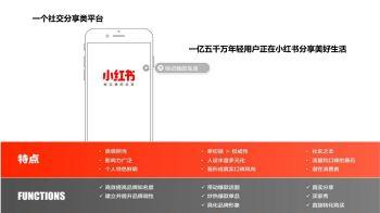 杨谨溪V3小红书落地模式宣传画册