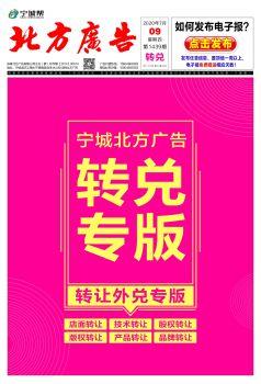 宁城北方广告7月8日转兑信息_复制