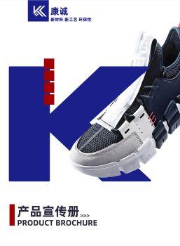 产品宣传册(康诚)