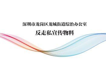 深圳市龙岗区龙城街道综治办公室电子画册