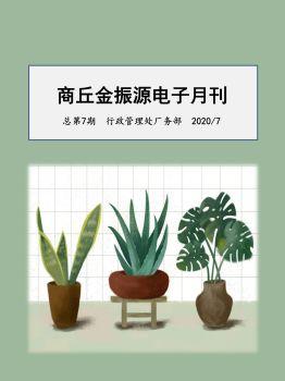 金振源电子月刊总第七期