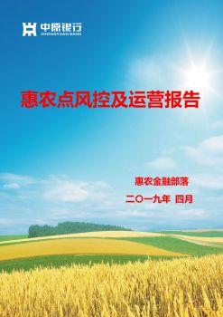 惠农点风控及运营报告 电子书制作平台