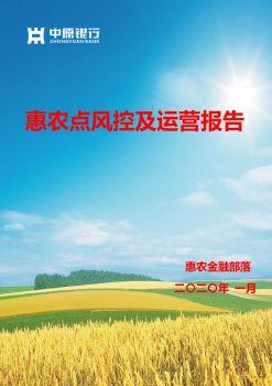 2019年惠农点风控及运营报告