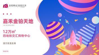 嘉禾金铂天地项目手册-0623