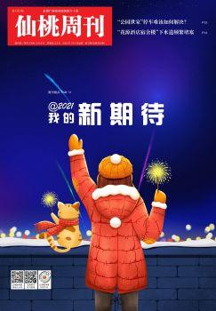 仙桃周刊电子版2021年第1期 电子书制作软件