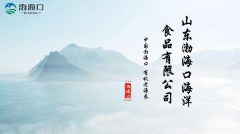 山东渤海口海洋食品有限公司(1)电子画册