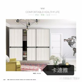简康卡迪雅门业衣柜门2020二期电子画册