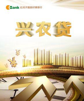 石河子国民村镇银行兴农贷宣传画册