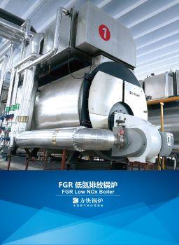 方快锅炉-FGR低氮锅炉
