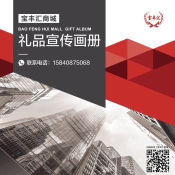 宝丰汇商城礼品宣传画册 电子书制作软件