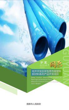 宁夏固原经济开发区新型高性能塑料新材料系列产品项目 电子书制作软件