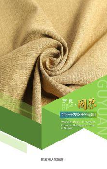 宁夏固原经济开发区织布项目 电子书制作软件