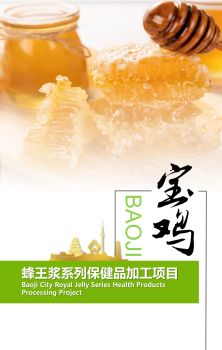 宝鸡市蜂王浆系列保健品加工项目宣传画册