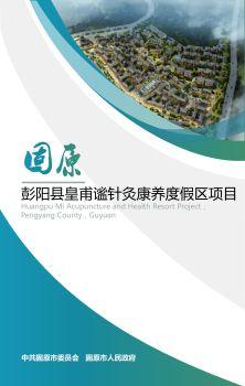 固原市彭阳县皇甫谧针灸康养度假区项目 电子书制作软件