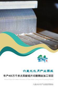 六盘水水月产业园区年产400万千米太阳能硅片切割钢丝加工项目电子画册