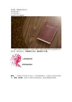 网红黎明花果茶电子宣传册
