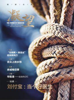《凝望》杂志02