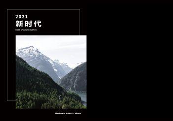 2021新时代欧洲进口岩板画册(12.19)