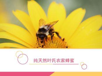 纯天然叶氏农家蜂蜜电子宣传册