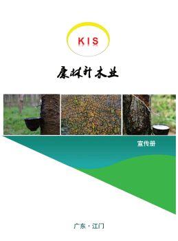 KIS 康林升木业,电子期刊,在线报刊阅读发布