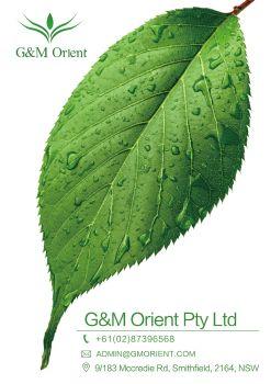 GM Orient产品推荐2019年5月 电子杂志制作平台