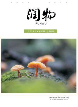 《润物》第9期电子版 电子书制作平台
