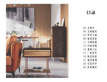 欧铂雅1037系列 电子杂志制作平台