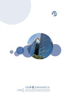 派德画册 电子书制作软件