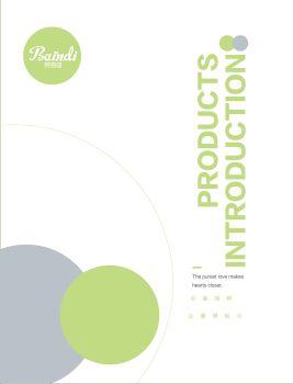 贝恩迪品牌产品宣传手册