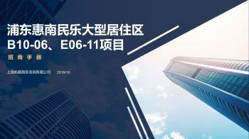 浦东惠南民乐大型居住区B10-06、E06-11项目招商手册1.2