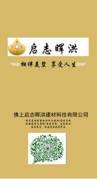 启志晖洪最新力作宣传画册