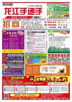 11月28日龙江手递手电子画册