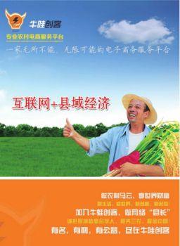 牛哇创客农村电商平台电子宣传册